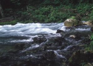 rapids NCRS image
