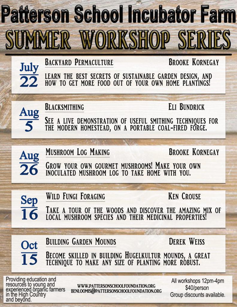 PSF Summer Workshops Poster